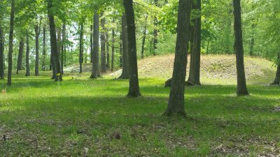 One of the smaller mounds near the largest mound